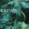 Restorative Yoga Ottawa