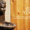 Yin Yoga Teacher Training Ottawa