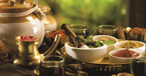 Ayurveda Day Retreat