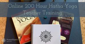 Hatha Yoga Teacher Training – Summer Training