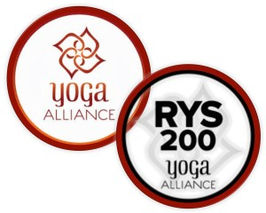 YA joint-logos-300x240