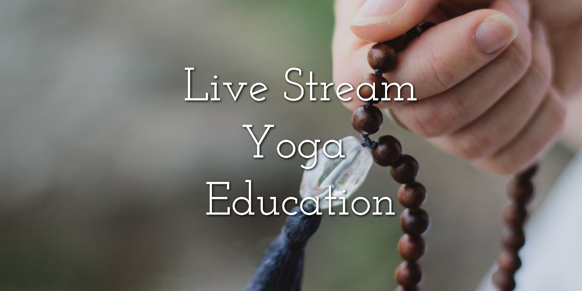 Live Stream Yoga Education
